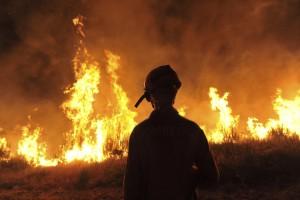 Estados Unidos informó de la muerte de un bombero mientras combatía un incendio en el condado de Modoc