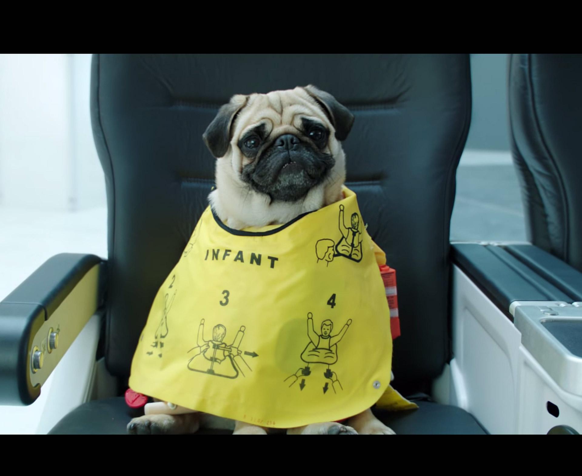 Air New Zealand explica sus normas de seguridad con un divertido video al estilo de la comedia de ciencia ficción