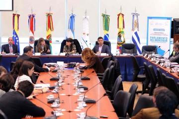 Oposición presentó ante el Parlasur reelecciones presidenciales