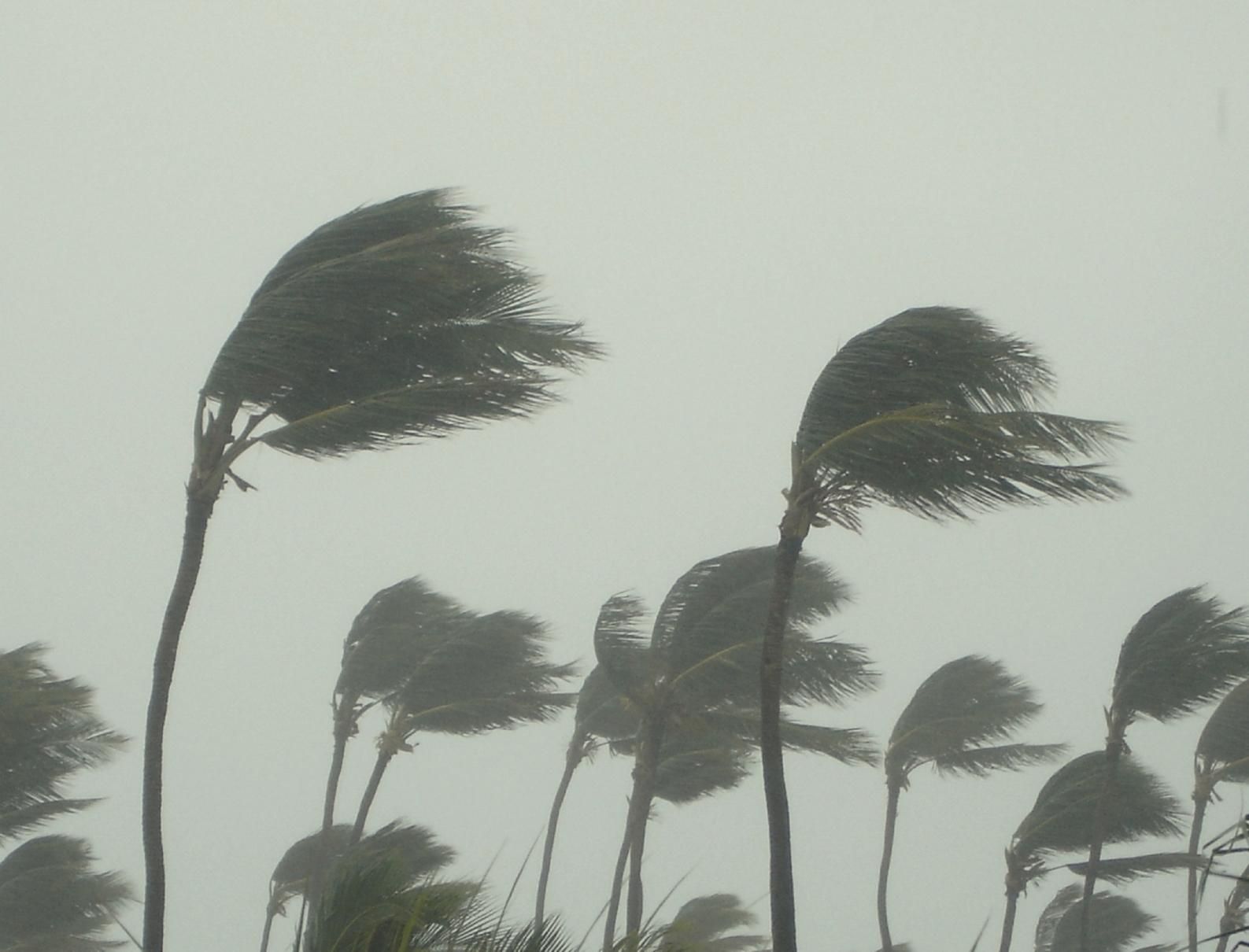 Se espera que en las próximas horas el huracán se convierta en tormenta tropical