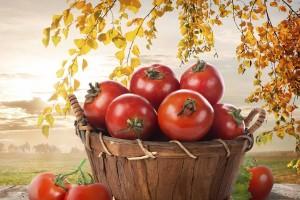 Con este descubrimiento podrán crear mas frutas medicinales que no serán costosas