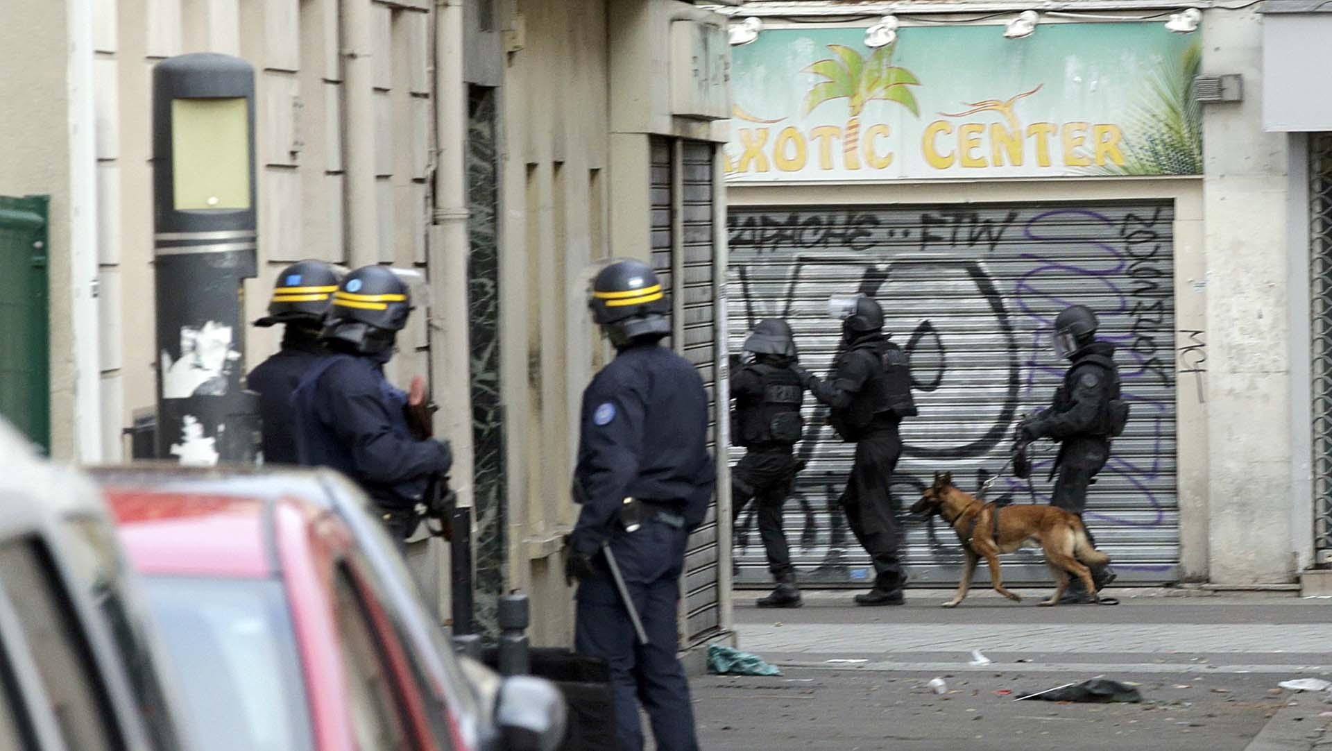 Rusia ofreció enviar a Francia uno de sus perros policías tras la muerte de Diesel