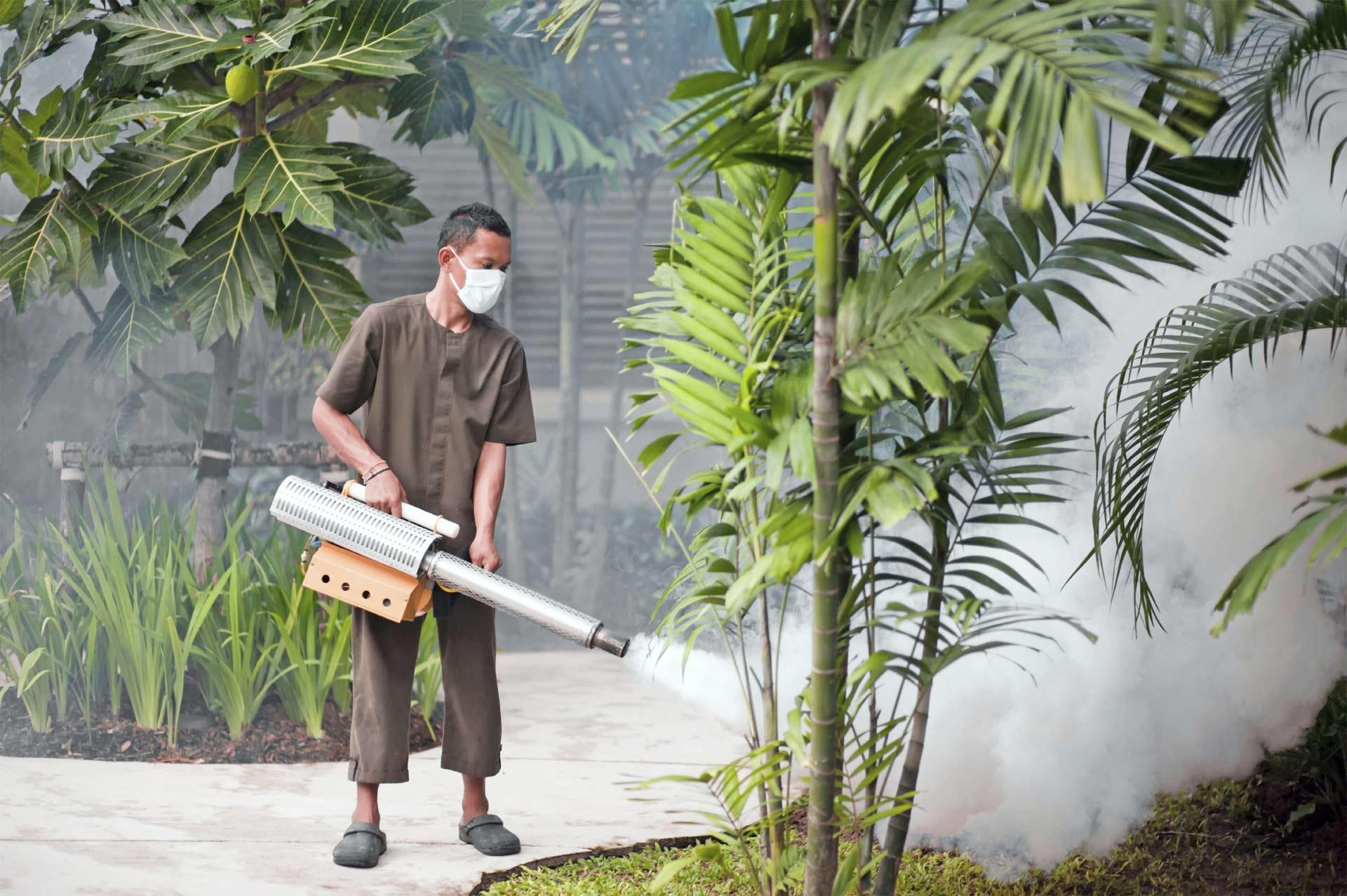 En Carabobo se realizan jornadas de control mediante la eliminación de criaderos y fumigación en zonas de alto riesgo