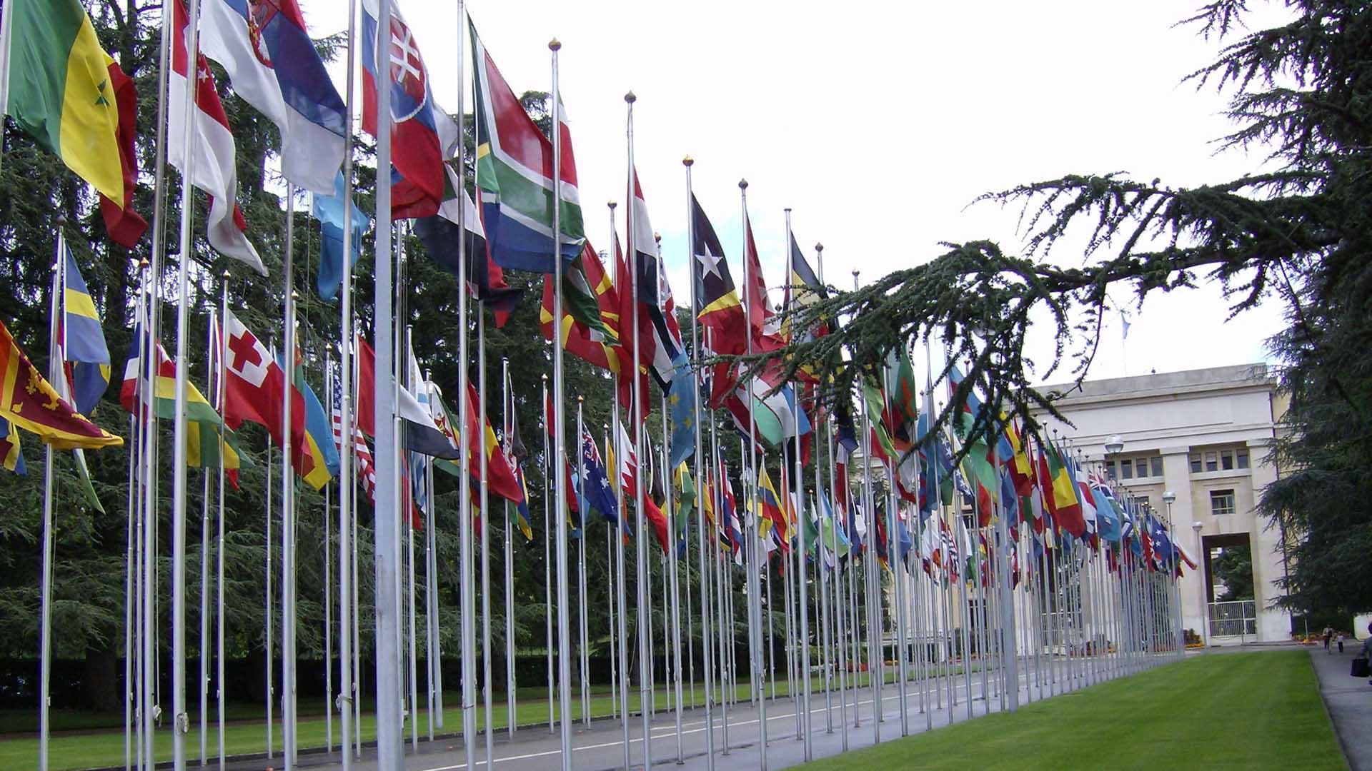 Portavoz galo expuso la propuesta ante los 15 miembros del consejo de la ONU en Nueva York