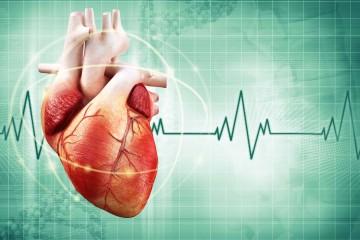 La salud del corazón es fácil de proteger cuando se adopta una rutina apegada al beneficio del organismo