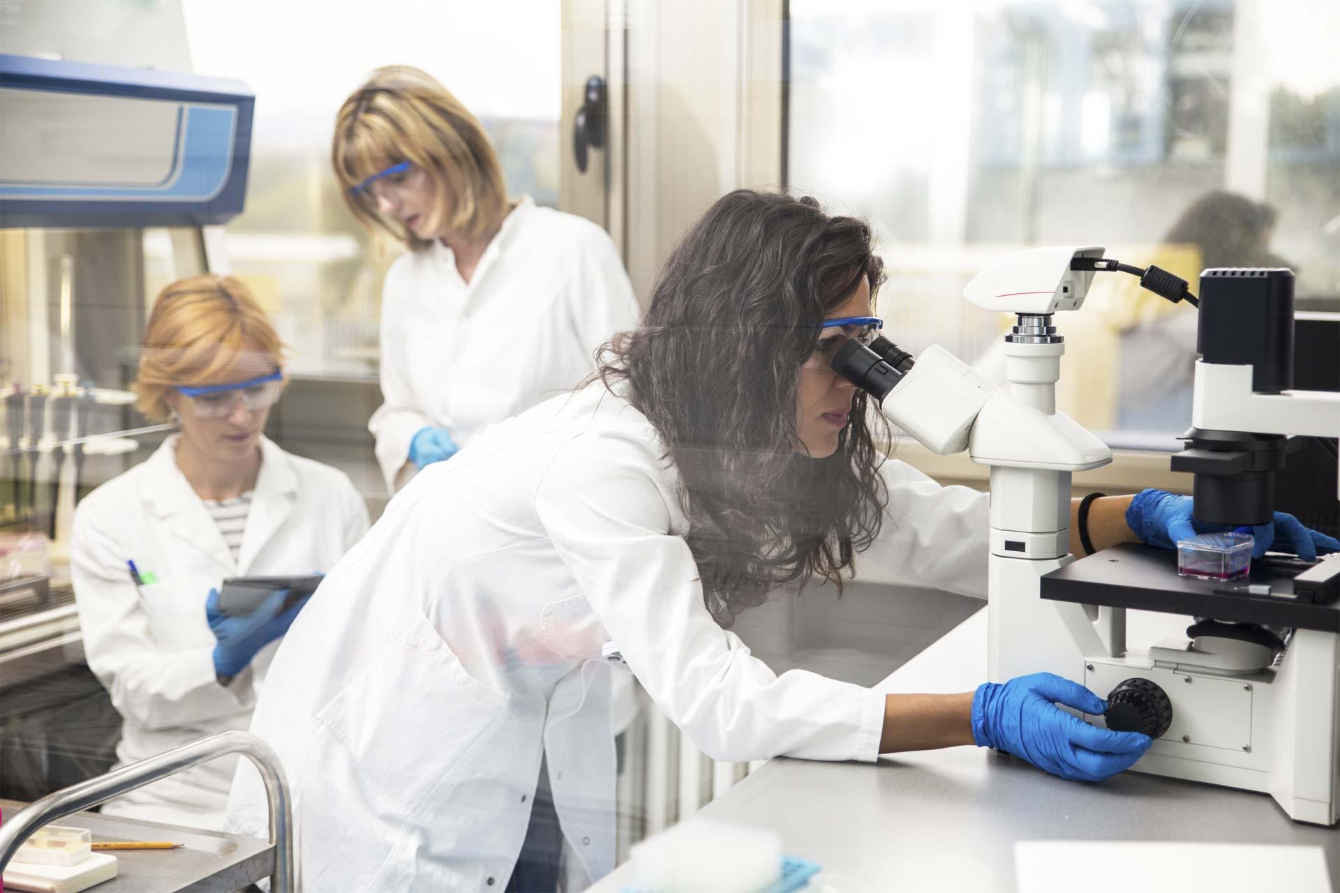 La interacción entre células y macromoléculas resulta clave para crear medicamentos contra enfermedades infecciosas