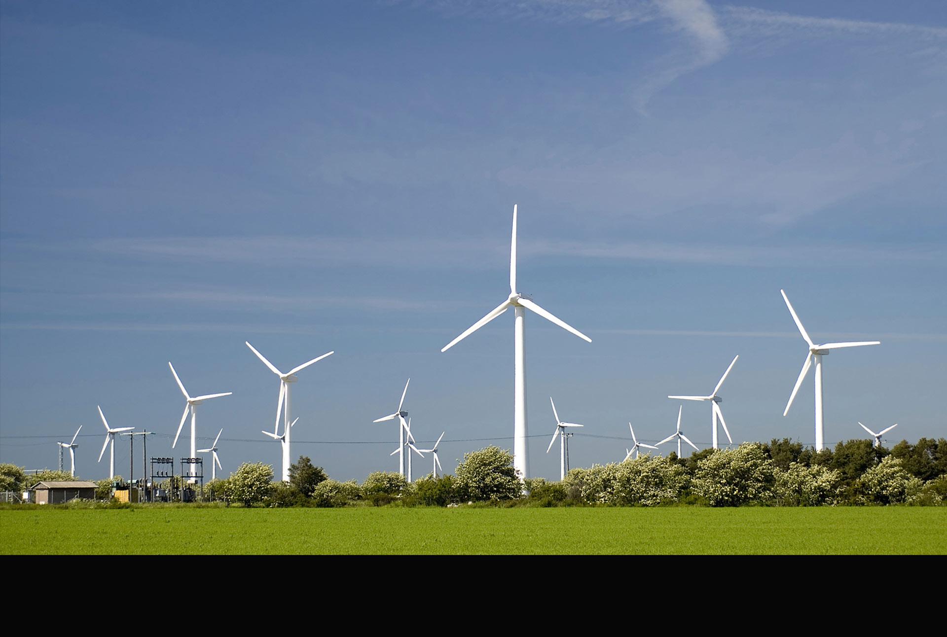 El plan a largo plazo de que toda la energía utilizada por la empresa sea verde ya está en marcha
