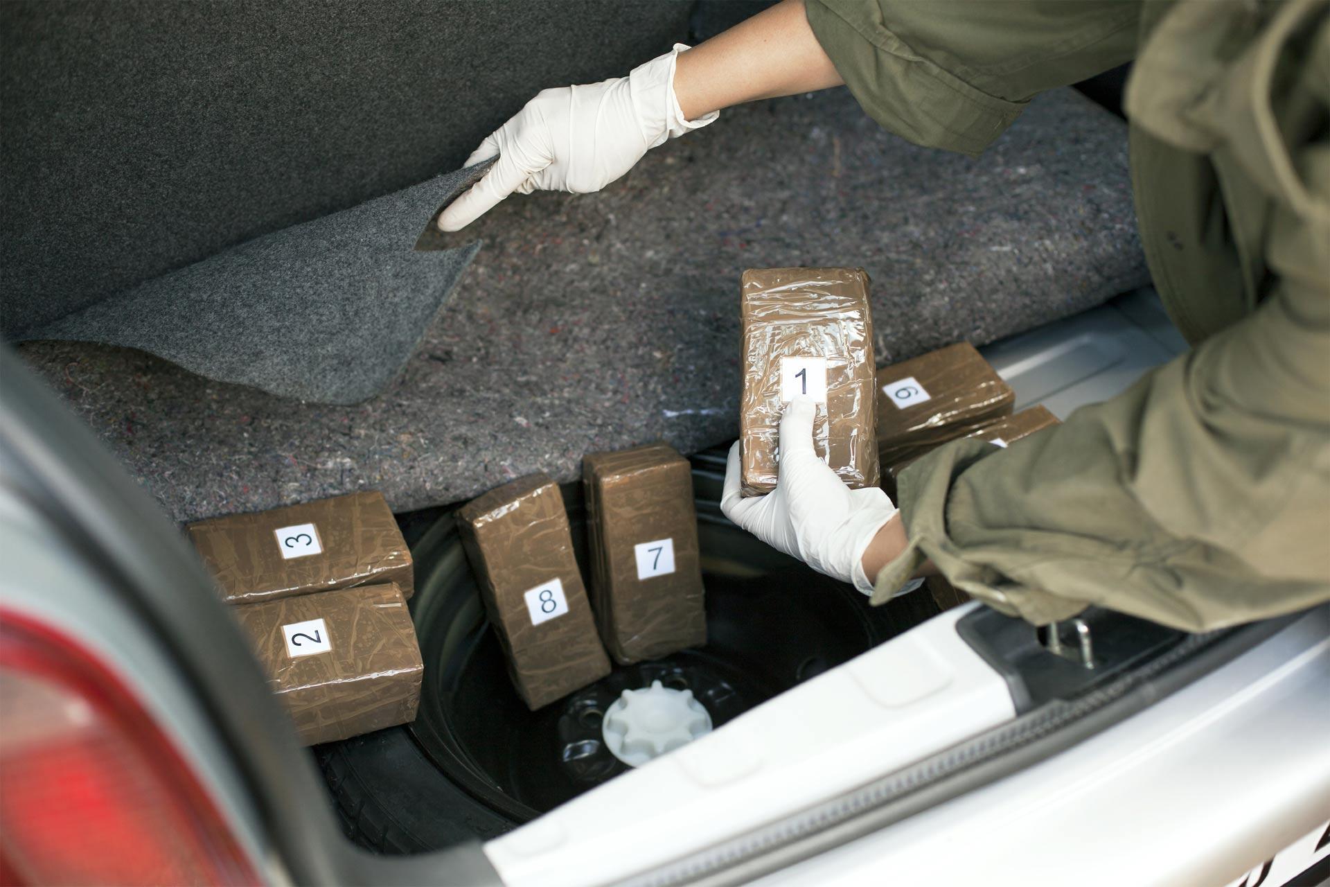 El país aumentará el patrullaje en todas sus fronteras para combatir el tráfico de drogas, vehículos y otros productos