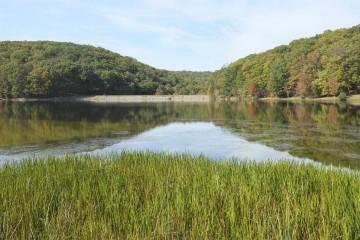 El gobierno anunció la creación de un Consejo Nacional de Agua como medida para enfrentar la escasez de agua