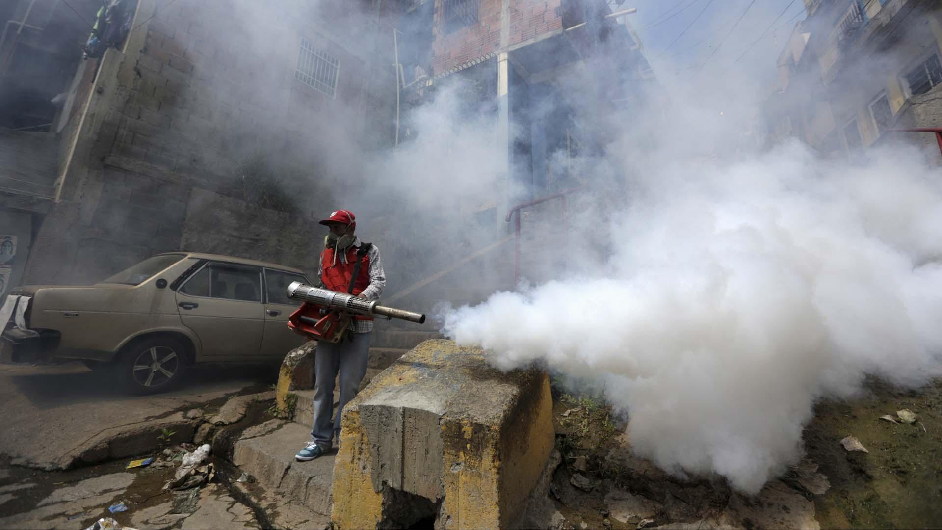 Advierten sobre procesos de fumigación que se activaran tras comprobarse la existencia de casi cinco mil casos