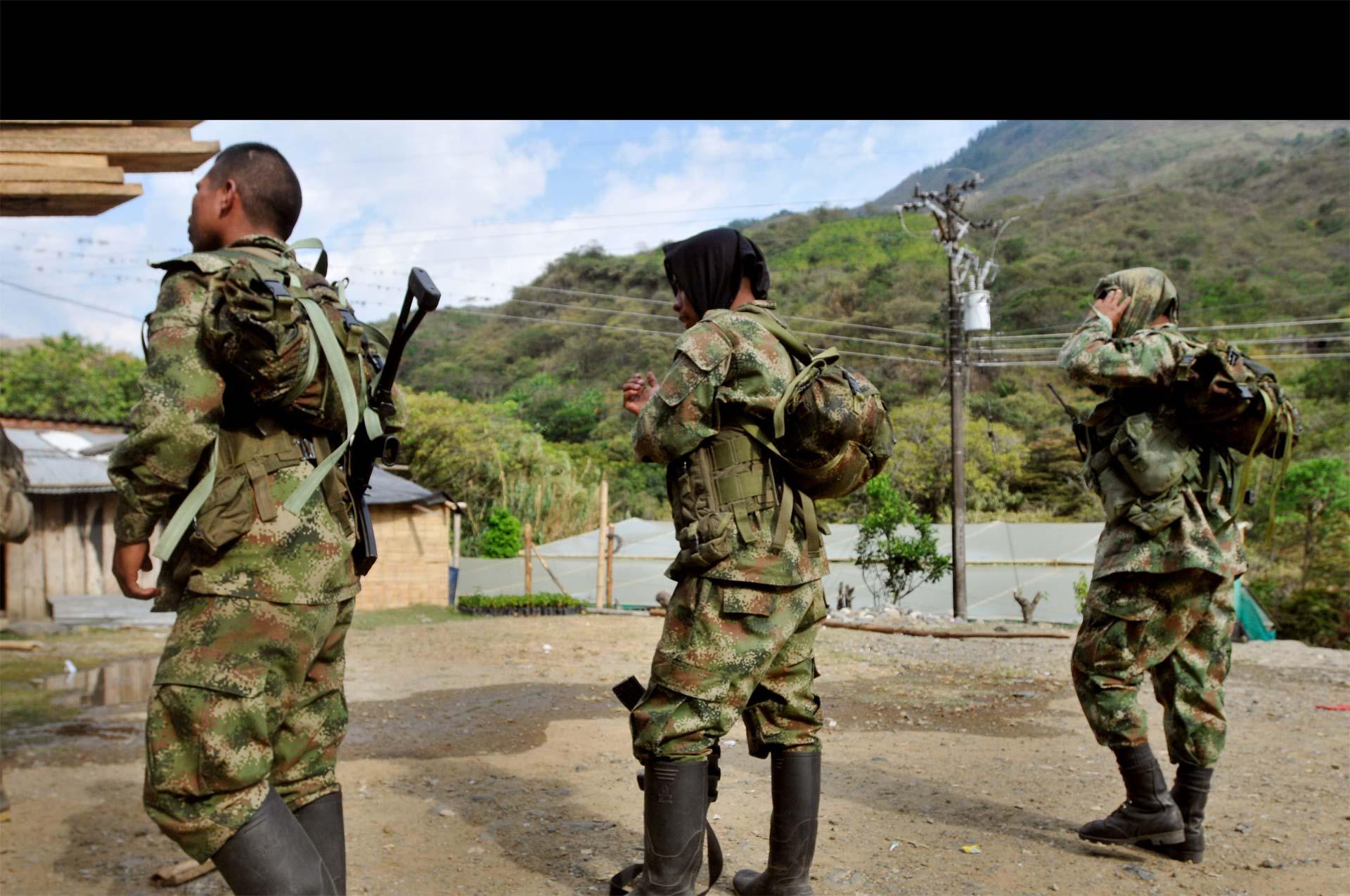 Esto sucedió en el marco del proceso de paz entre el Gobierno y las Fuerzas Armadas Revolucionarias de Colombia