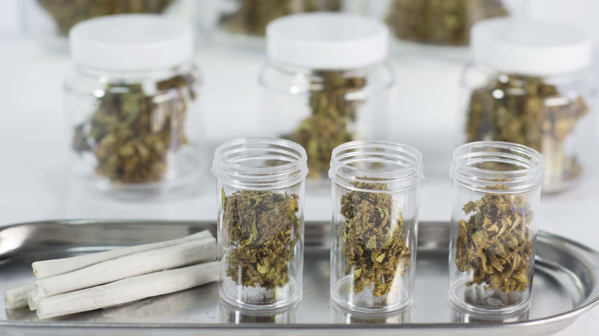 Eliminarán de su plataforma todas las páginas usadas para comercializar la planta con fines medicinales
