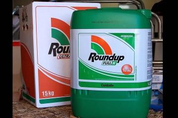 El glifosato es el herbicida más usado en el mundo. La OMS lo clasificó como posible carcinógeno