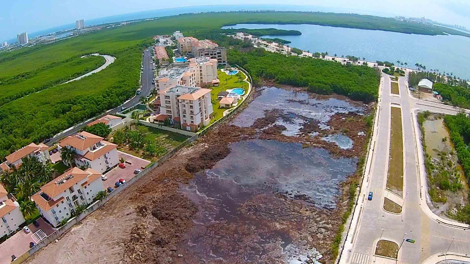 Activistas y ecologistas criticaron proyecto inmobiliario por considerar que el mismo devastará la zona ecológica