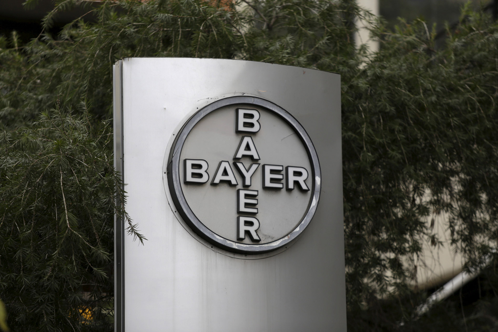 Bayer interesado en Monsanto