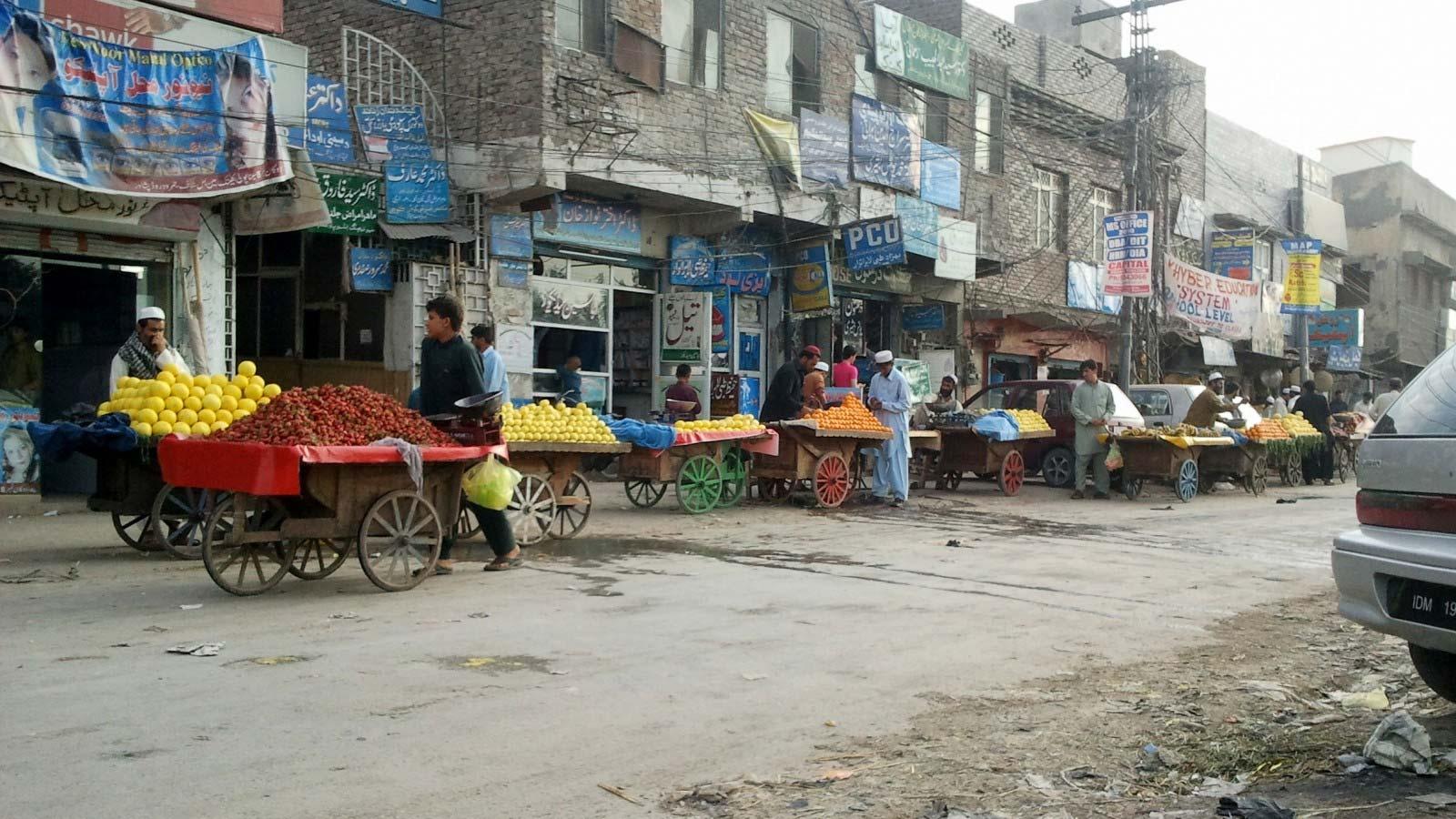 Los habitantes dicen que la población de roedores en Peshawar supera los cientos de miles