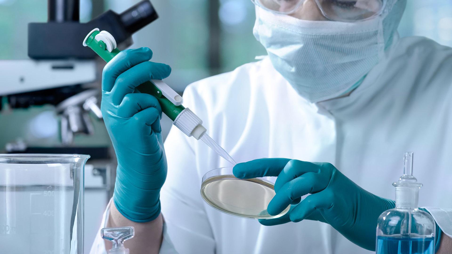 Estudios previos demuestran que la respuesta inmunológica, es la más asociada con la protección de una posible vacuna