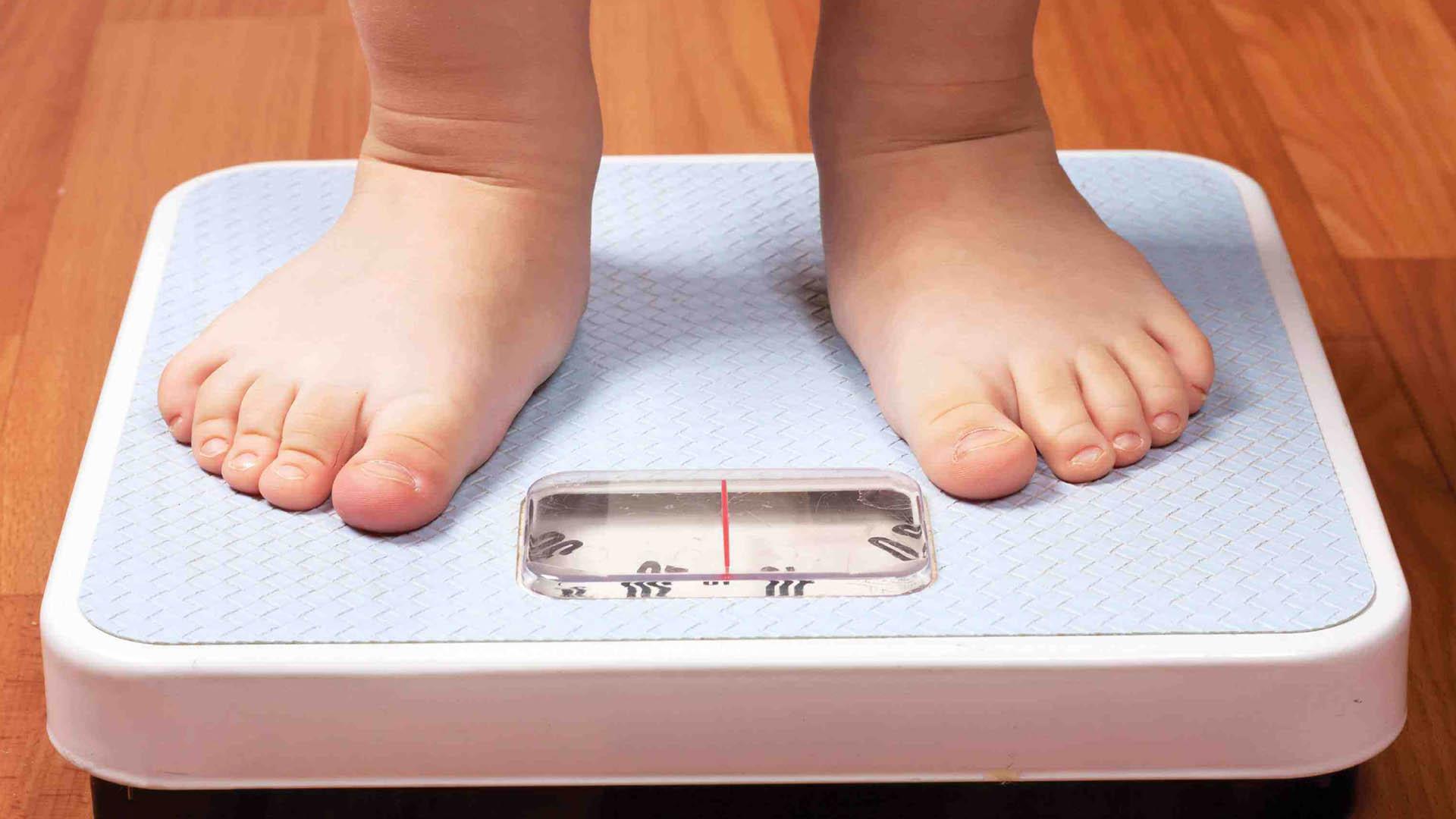 Una investigación de la Universidad de Washington determinó que el sobrepeso de la madre puede deteriorar la salud sus descendientes