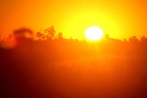 La Organización Meteorológica Mundial informó que los niveles de Co2, que producen el calentamiento global, aumentaron