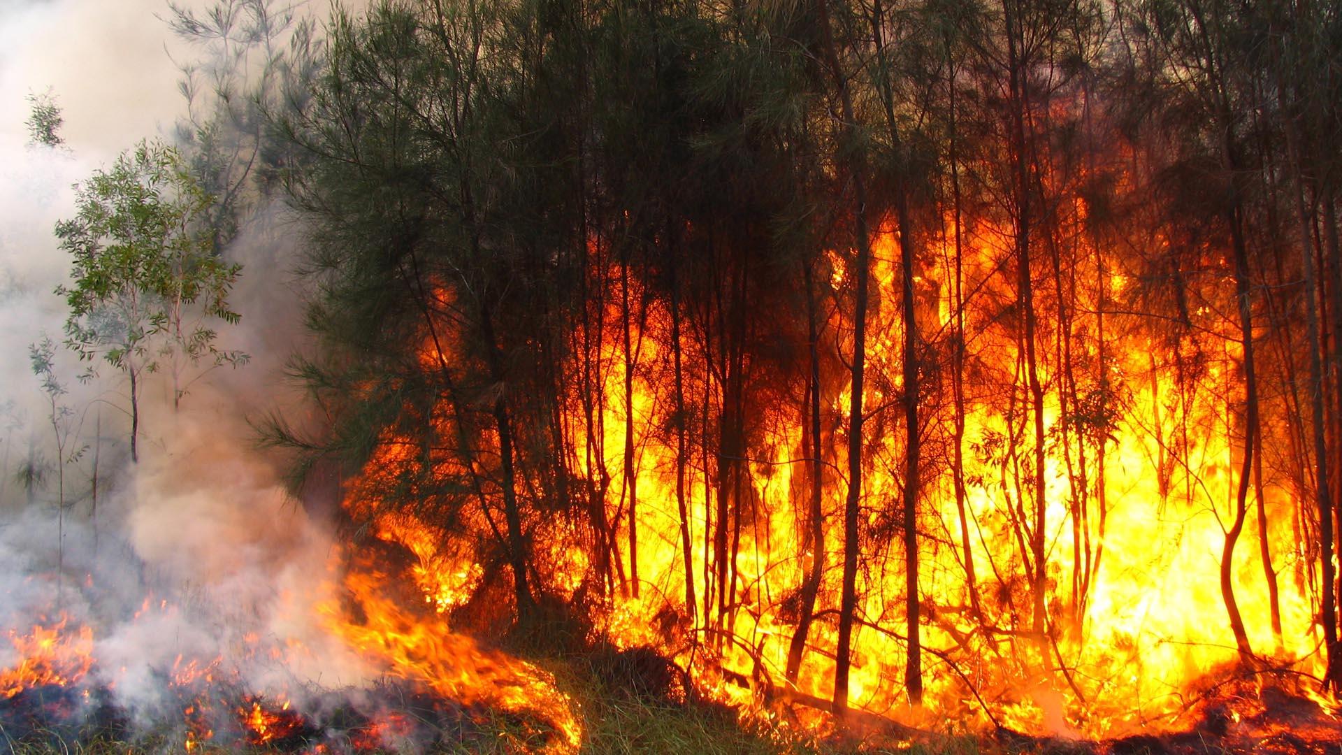 Otras 700 personas fueron evacuadas de sus hogares como medida de prevención