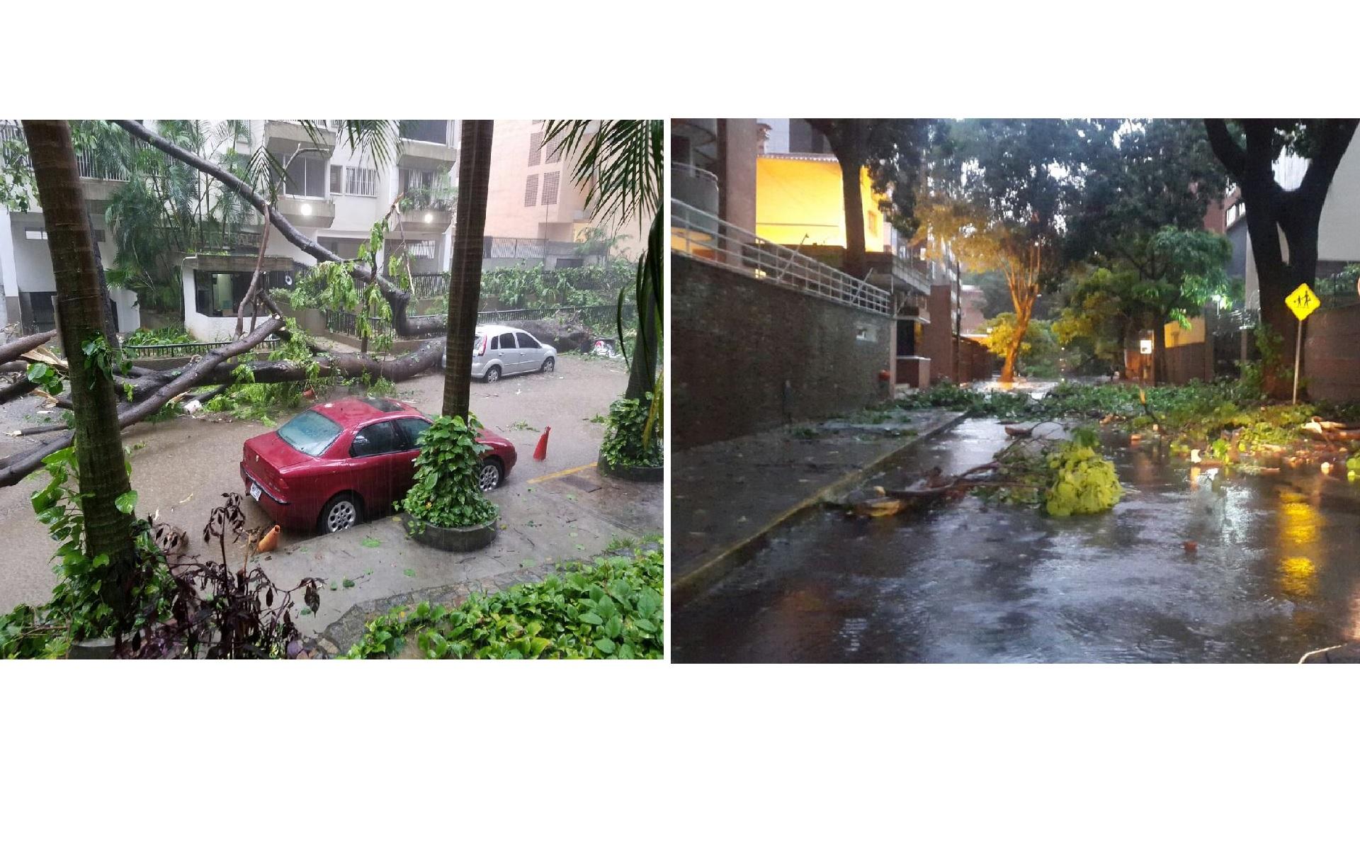 En sectores como Chacao se cayeron varios árboles y en los Jardines del Valle falló el servicio eléctrico