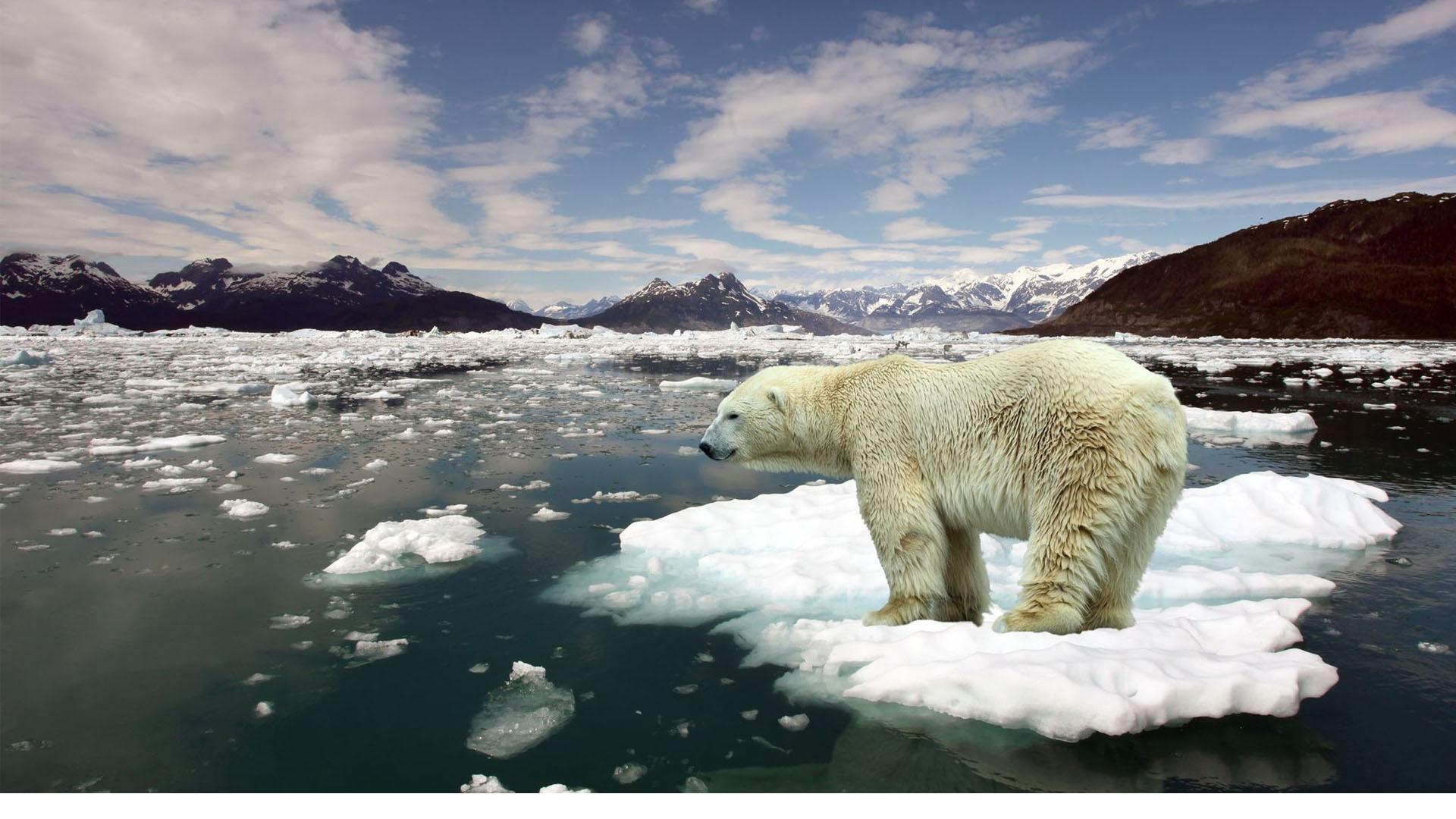 La contaminación y las bombas nucleares han dado paso para que la tierra entre el en el Antropoceno