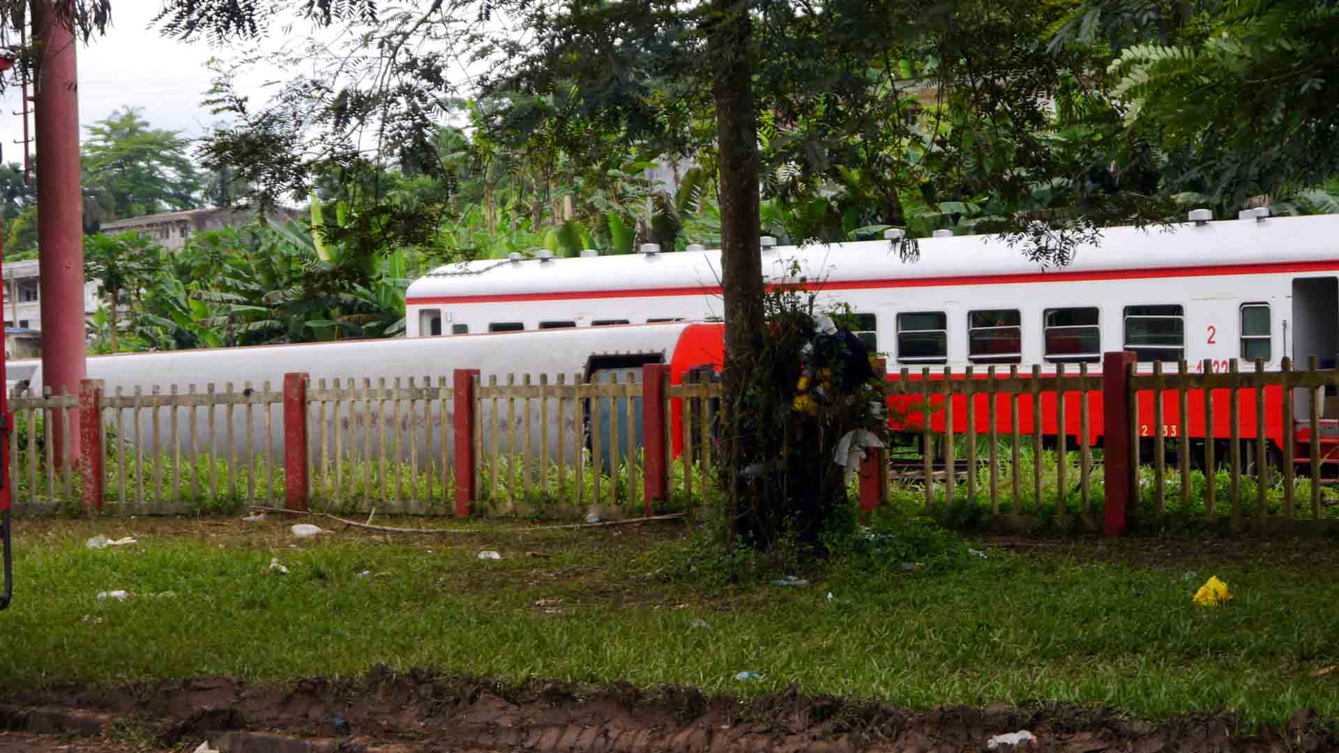 Tras el descarrilamiento de un tren en la zona se contabilizan 80 muertos y 600 heridos pero se teme que cantidad de víctimas mortales se eleve