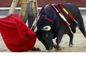 Las competencias de este tipo se encontraban prohibidas en Cataluña desde hace seis años con la intención de proteger a los animales