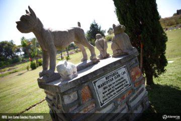 La Cámara Municipal de la ciudad brasileña de Blumenau, aprobó una ley que permitirá el entierro de las mascotas junto a familiares fallecidos