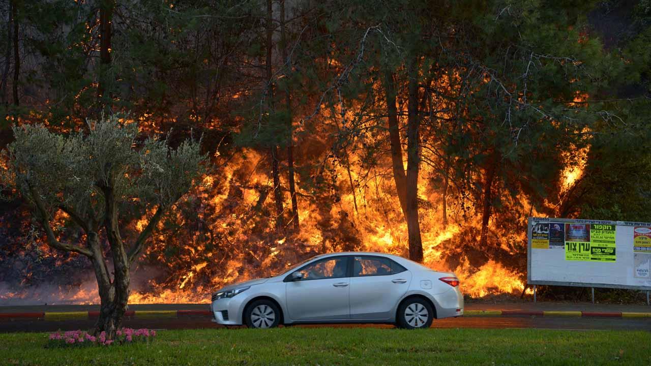 La Policía evacuó la zona portuaria de Haifa debido a la propagación de incendios que estaba afectando a los habitantes