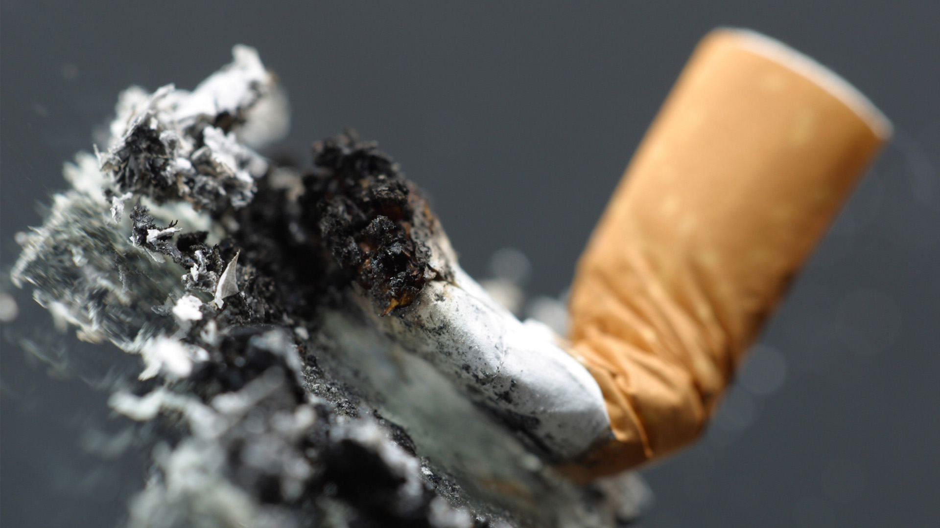 Investigadores descubrieron que el cigarro produce mutaciones en el ADN… y pudieron cuantificarlas