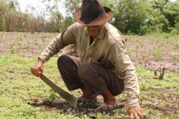 Colombia y la FARC promoverán acceso a las tierras, empleo y vida digna