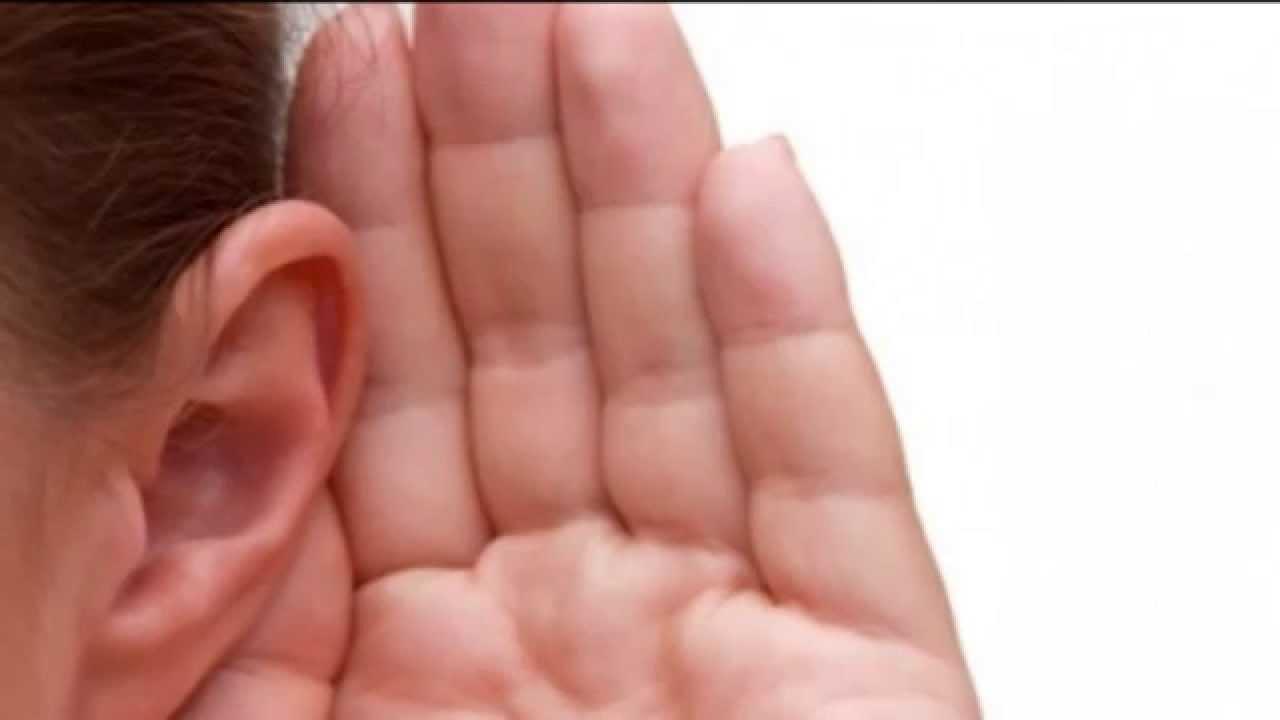 La pérdida de audición se produce cuando se pierde la capacidad de conducir el sonido del oído externo y medio al oído interno