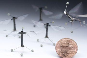Nuevos hallazgos permitirán crear robóts que transformarán sectores como la seguridad o las labores de salvamento