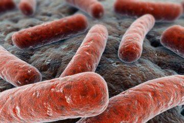Esto sugiere la reducción de la brecha del país a nivel internacional sobre la detección de enfermedades contagiosas