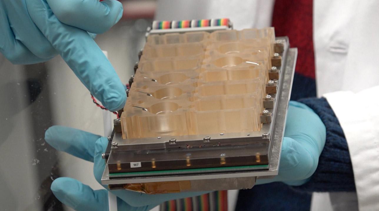 Científicos diseñaron un dispositivo que permite emular el ciclo menstrual completo en el laboratorio