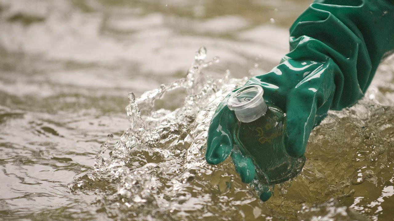 Entre los objetivos del proyecto se encuentra la idea de purificar las agua ambientales como forma de prevenir el daño en la vida acuática