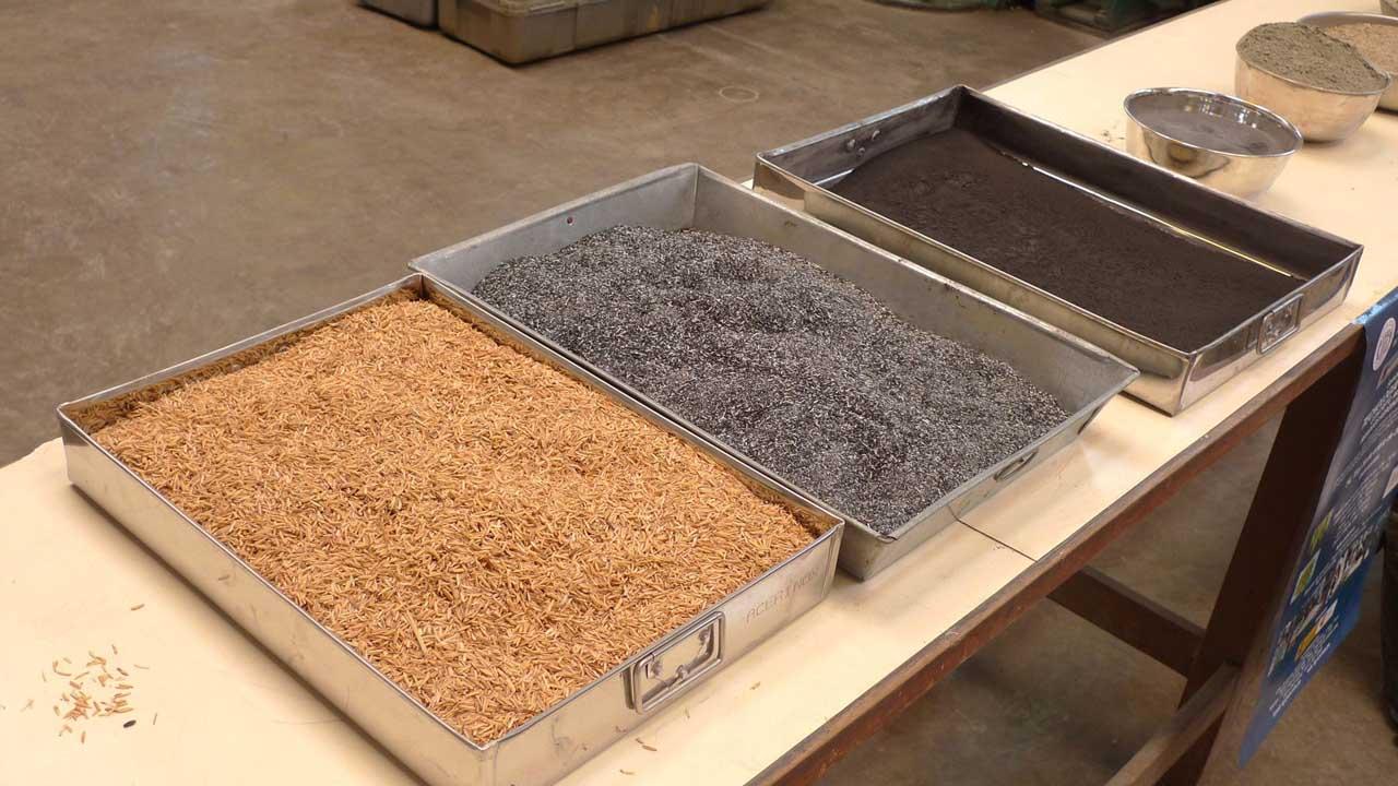 El proyecto busca preparar materiales que sustituyan las materias primas tradicionales por cenizas de olivo y pino