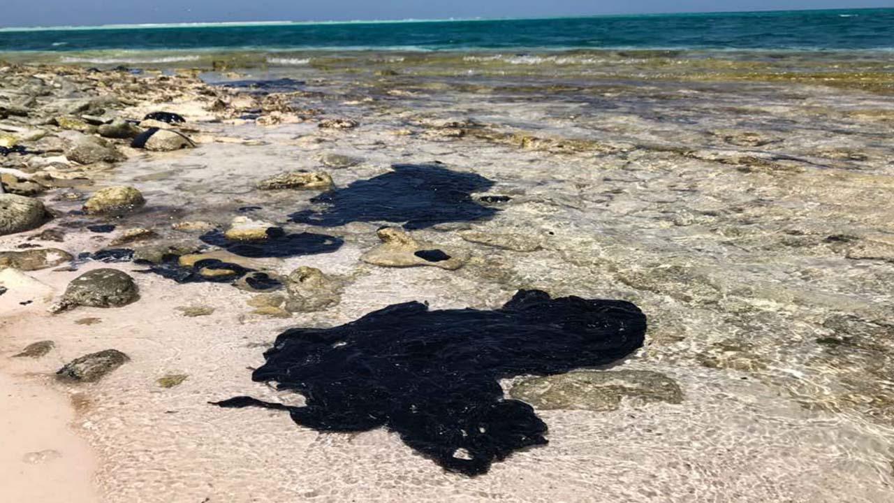 """Bernhard Weissenbach, especialista en el tema ambiental asegura que las consecuencias de """"la marea negra"""" son devastadoras"""