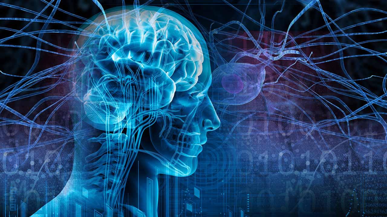 Según expertos, gracias a este estudio se ha desarrollado un sistema automatizado y objetivo que evita las interpretaciones subjetivas de los registros