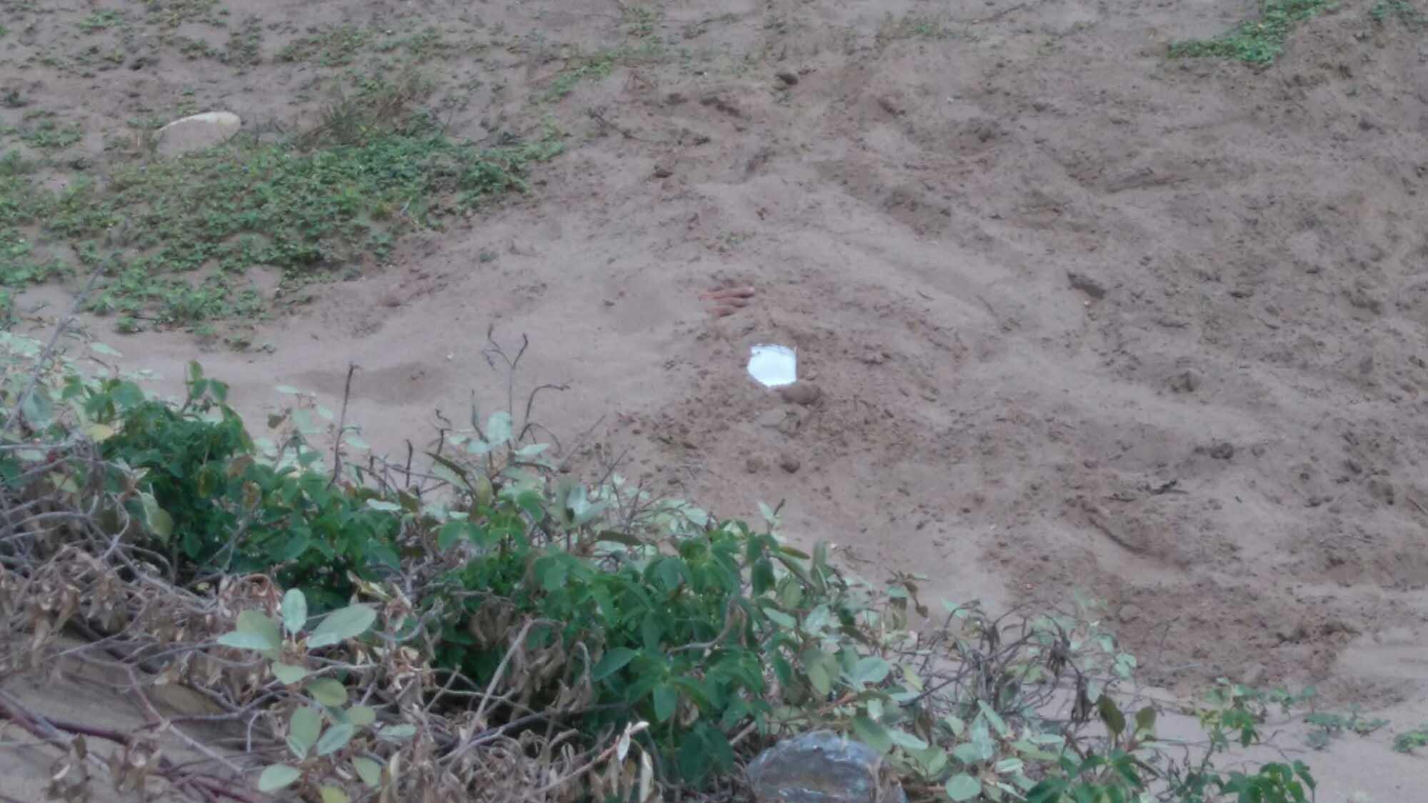 Los cuerpos de estaban semi enterrados en el patio de una vivienda, ubicada en la residencia La Raisa II, en los Valles del Tuy