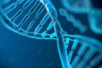 El experimento busca corregir el síndrome de Hunter en un hombre de 44 años