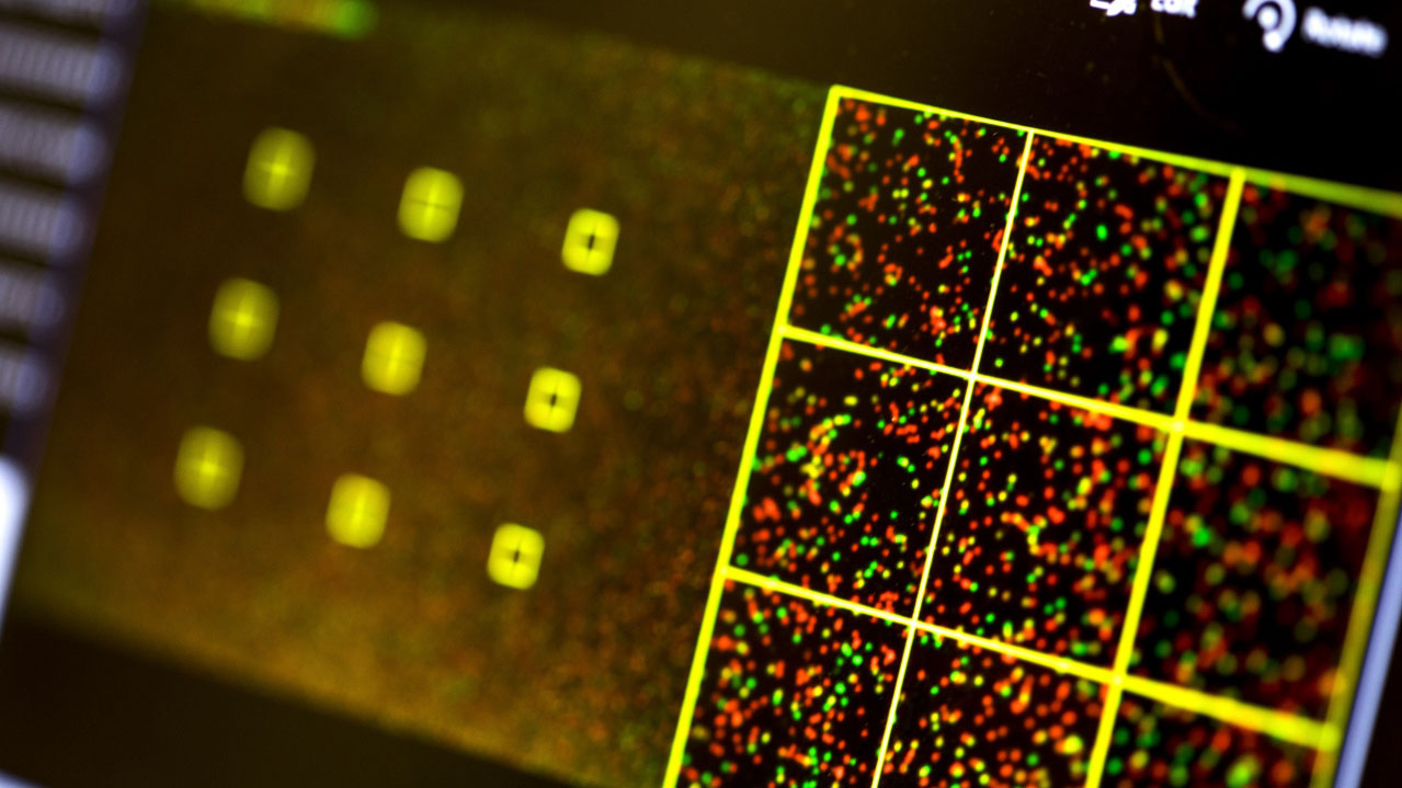Aunque el ataque es simbólico, puede ser un gran paso más a la unión entre lo digital y biológico que ya ocurre en la ciencia