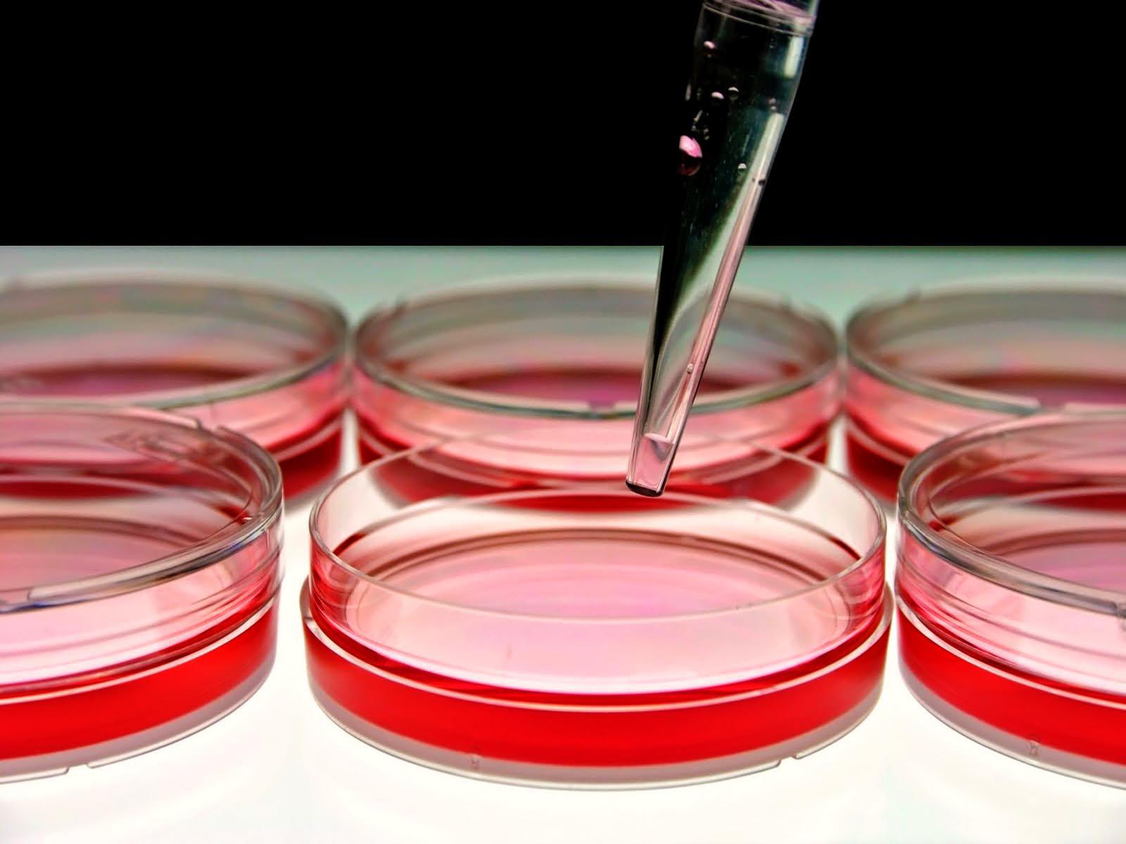 Es el primer tratamiento en el mundo que ha sido autorizado para tratar la enfermedad