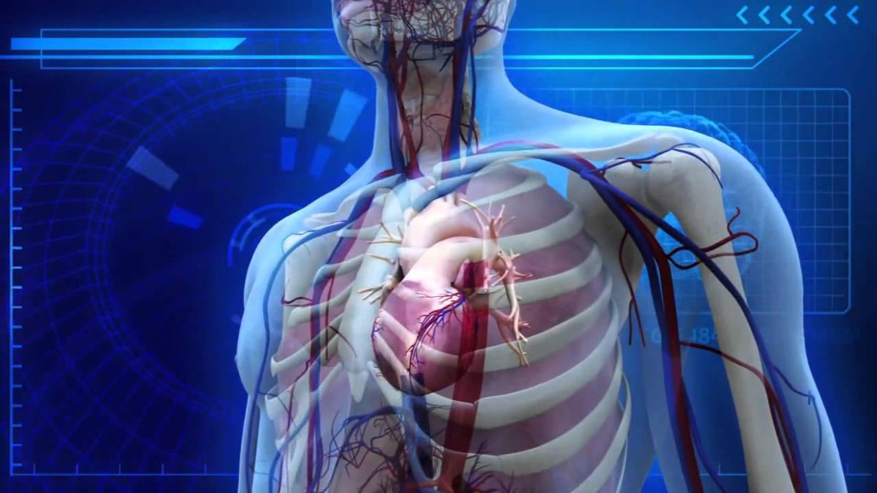 Científicos canadienses crearon un material biológico inyectable que regenera tejidos