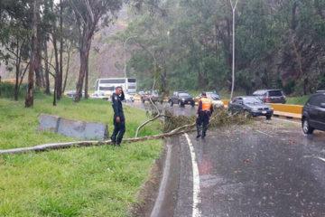 Autoridades de Protección Civil informaron que las intensas lluvias registradas este martes 4 de septiembre en el país dejaron algunos sectores afectados