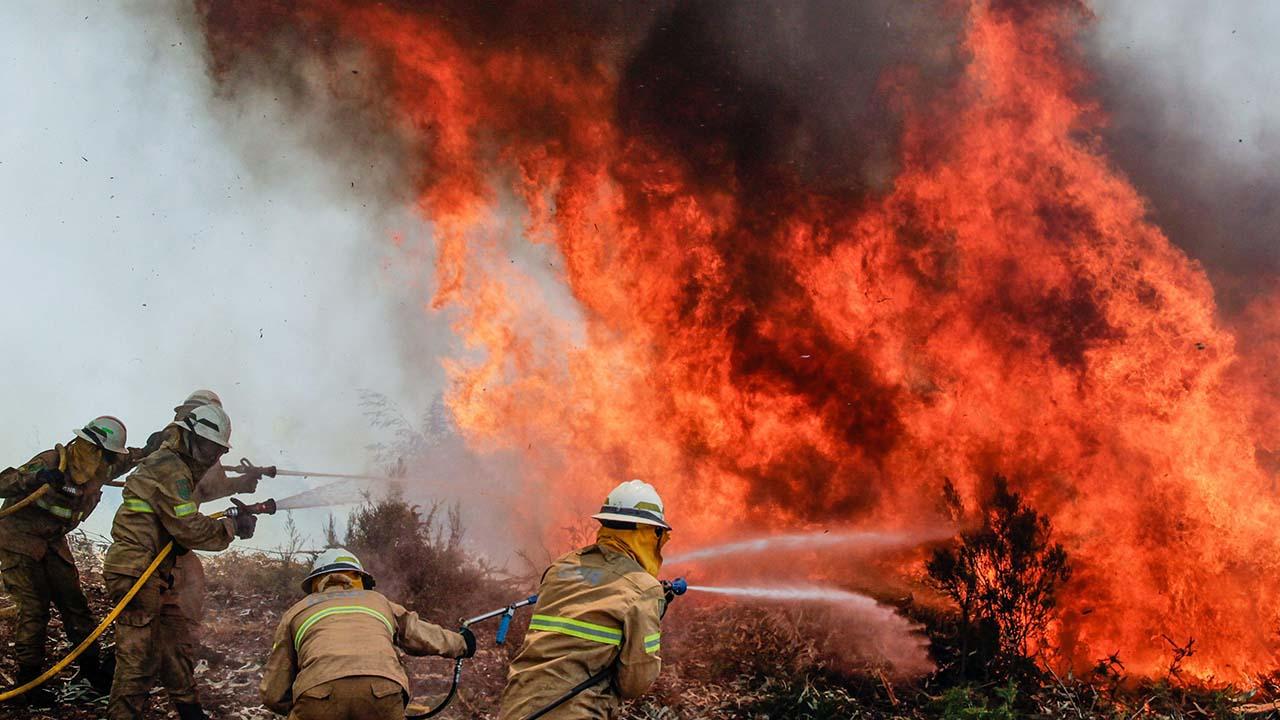 Esta es la segunda tragedia forestal que vive el país este año, después del gran incendio de Pedrógão Grande