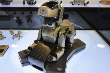 Al igual que el Aibo, el próximo robot tendrá la forma de un perro, aunque se desconoce si mantendrá el nombre.