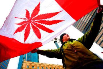 El proyecto de ley que legalizará el consumo recreativo del cannabis sigue su curso en el Parlamento canadiense