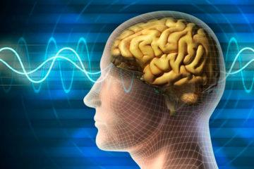 Innovador tratamiento para curar el cáncer cerebral
